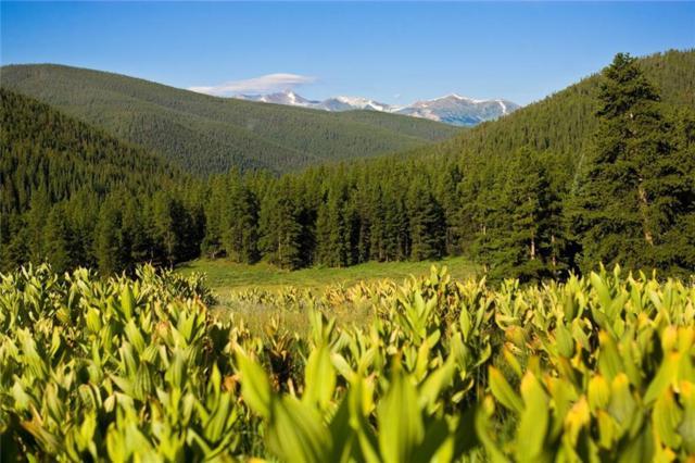 300 Imperial Way, Breckenridge, CO 80424 (MLS #S1009974) :: Colorado Real Estate Summit County, LLC