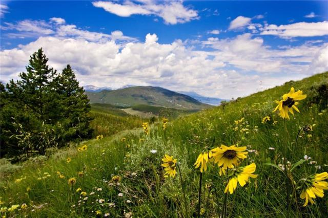 262 Imperial Way, Breckenridge, CO 80424 (MLS #S1009992) :: Colorado Real Estate Summit County, LLC