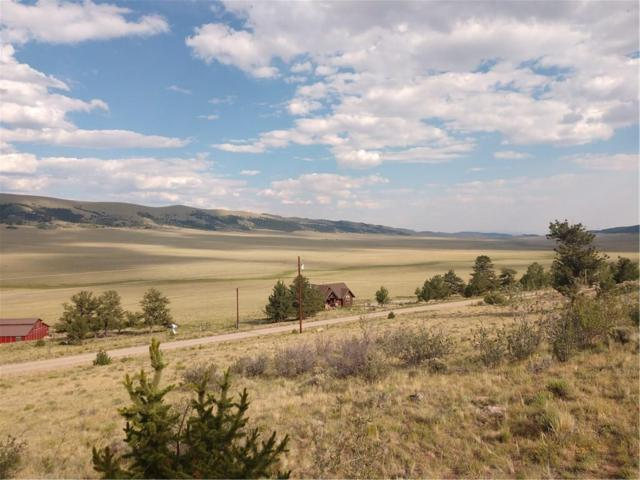 3437 Redhill Road, Fairplay, CO 80440 (MLS #S1010175) :: Resort Real Estate Experts