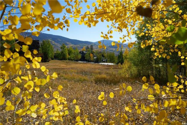 225 Two Cabins Drive, Silverthorne, CO 80498 (MLS #S1010480) :: Colorado Real Estate Summit County, LLC