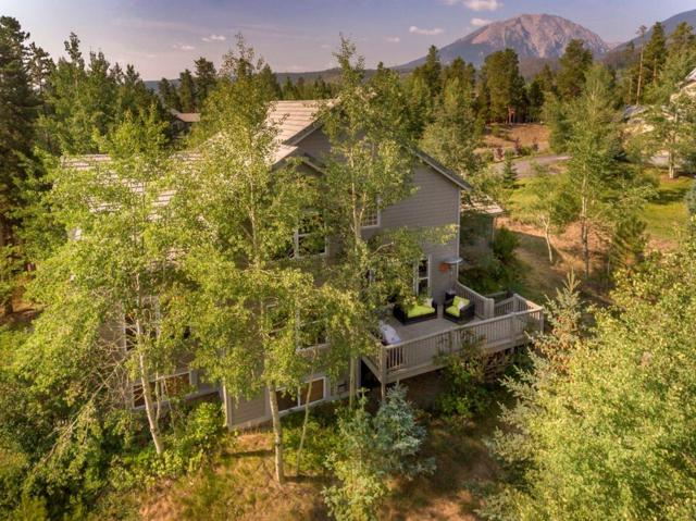 307 Red Hawk Circle, Silverthorne, CO 80498 (MLS #S1010553) :: Colorado Real Estate Summit County, LLC