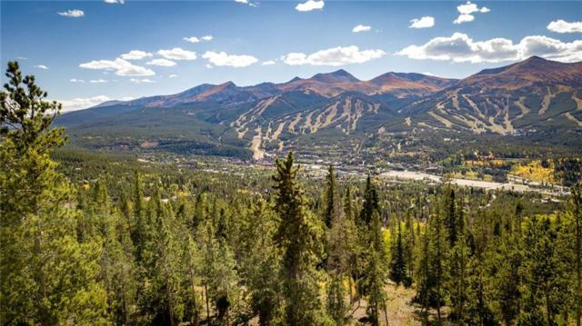 1030 Gold Run Gulch Road, Breckenridge, CO 80424 (MLS #S1010695) :: Resort Real Estate Experts