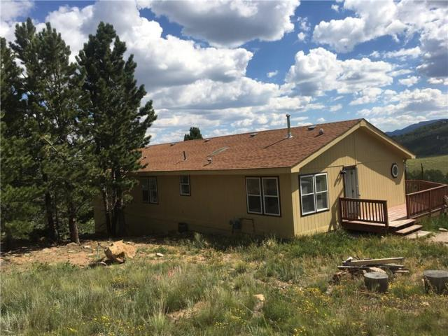 3352 High Creek Road, Fairplay, CO 80440 (MLS #S1010974) :: Colorado Real Estate Summit County, LLC