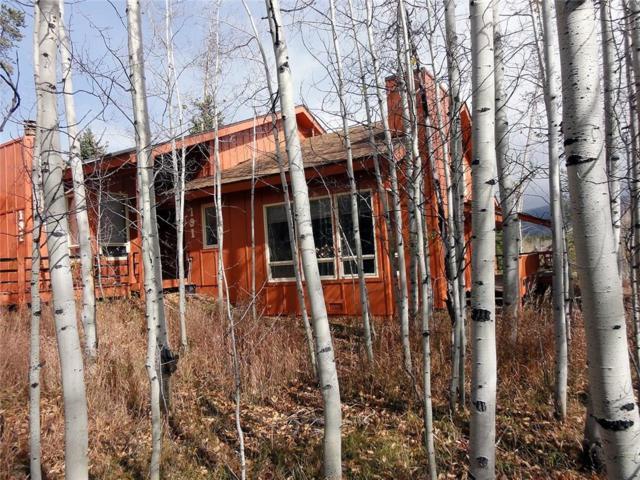 191 Poplar Circle, Silverthorne, CO 80498 (MLS #S1011203) :: Colorado Real Estate Summit County, LLC