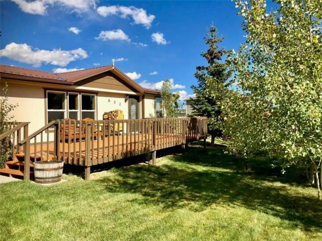 652 Crawford Lane, Fairplay, CO 80440 (MLS #S1011427) :: Colorado Real Estate Summit County, LLC
