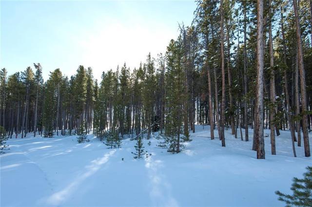 0057 Apex Circle, Breckenridge, CO 80424 (MLS #S1011936) :: Colorado Real Estate Summit County, LLC