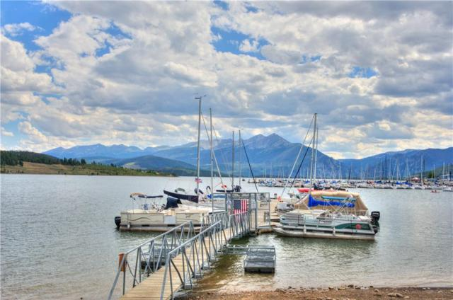 576 Tenderfoot Street #162, Dillon, CO 80435 (MLS #S1012749) :: Colorado Real Estate Summit County, LLC