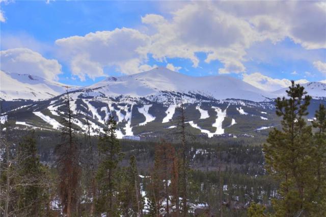 393 Scr 452, Breckenridge, CO 80424 (MLS #S1012952) :: Colorado Real Estate Summit County, LLC