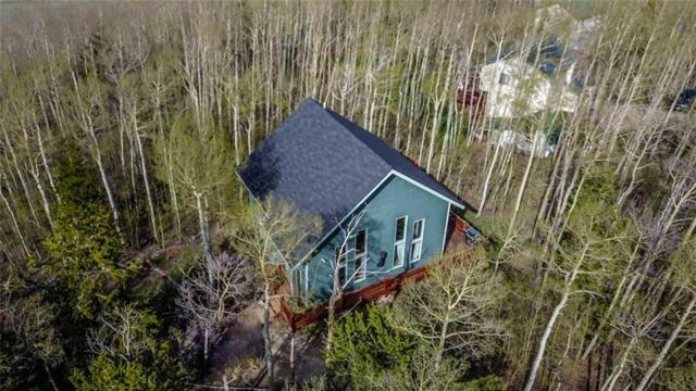 2644 High Creek Road, Fairplay, CO 80440 (MLS #S1013758) :: Resort Real Estate Experts