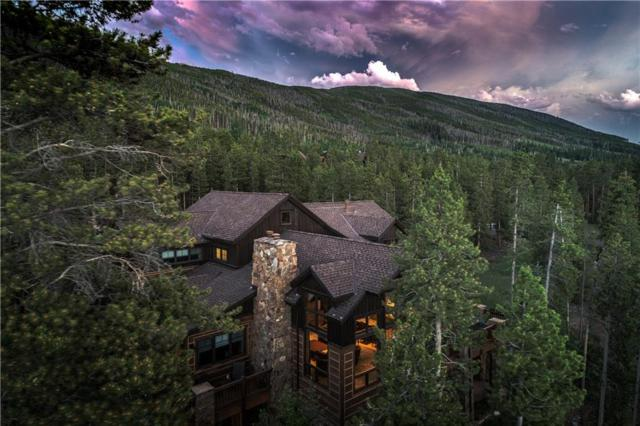 59 Mountain Bluebell Road, Keystone, CO 80435 (MLS #S1013859) :: Colorado Real Estate Summit County, LLC
