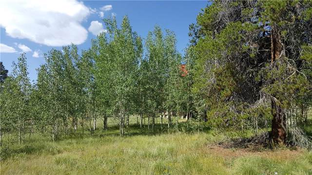 372 Park View Drive, Fairplay, CO 80440 (MLS #S1014971) :: Colorado Real Estate Summit County, LLC
