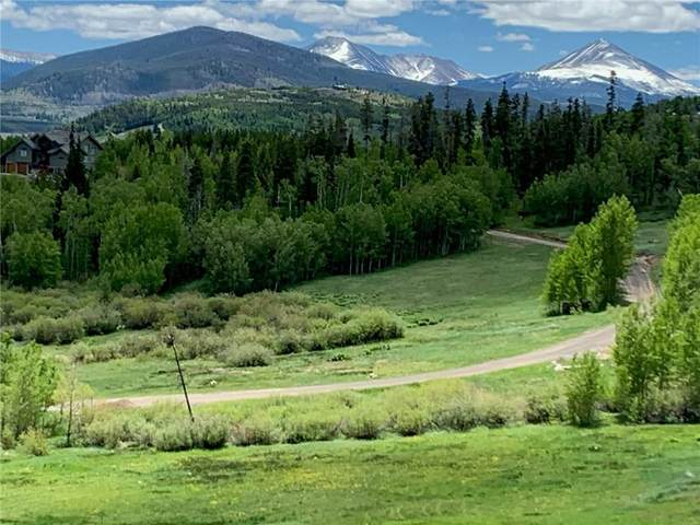 1672 Ruby Road, Silverthorne, CO 80498 (MLS #S1015596) :: Dwell Summit Real Estate