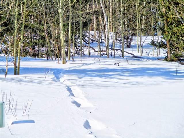 893 Lumberjack Road, Fairplay, CO 80440 (MLS #S1017383) :: Dwell Summit Real Estate