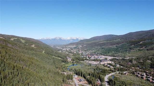 643 Alders Lane, Keystone, CO 80435 (MLS #S1017423) :: Colorado Real Estate Summit County, LLC