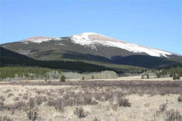 30 Stellar Jay Way, Fairplay, CO 80440 (MLS #S1018309) :: Dwell Summit Real Estate