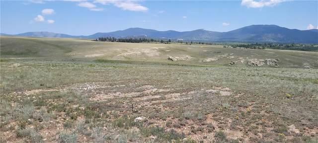 166 Bandelier Court, Hartsel, CO 80449 (MLS #S1023964) :: Colorado Real Estate Summit County, LLC