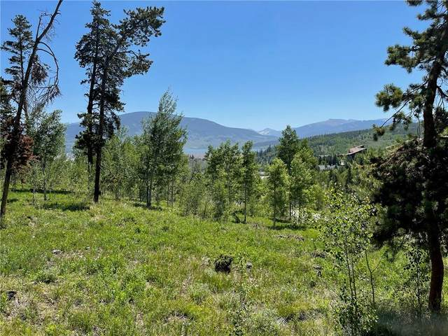 182 Kings Court, Silverthorne, CO 80498 (MLS #S1027530) :: Colorado Real Estate Summit County, LLC