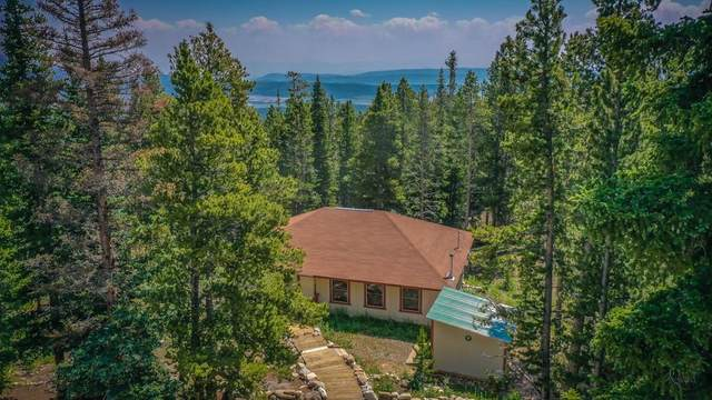 589 S Gold Trail Circle, Fairplay, CO 80440 (MLS #S1029163) :: Clare Day with Keller Williams Advantage Realty LLC