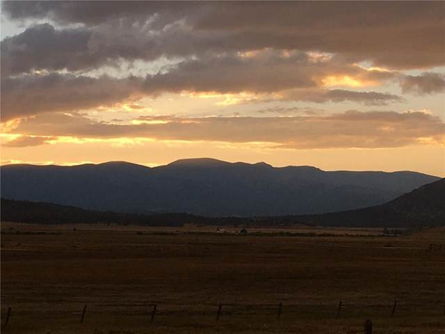 0 Thousand Peaks, Hartsel, CO 80449 (#S1030705) :: Compass Colorado Realty