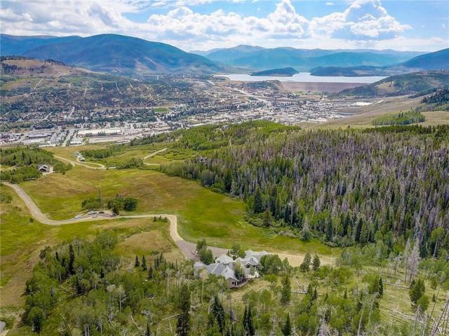 348 Jade Road, Silverthorne, CO 80498 (MLS #S1004762) :: Colorado Real Estate Summit County, LLC