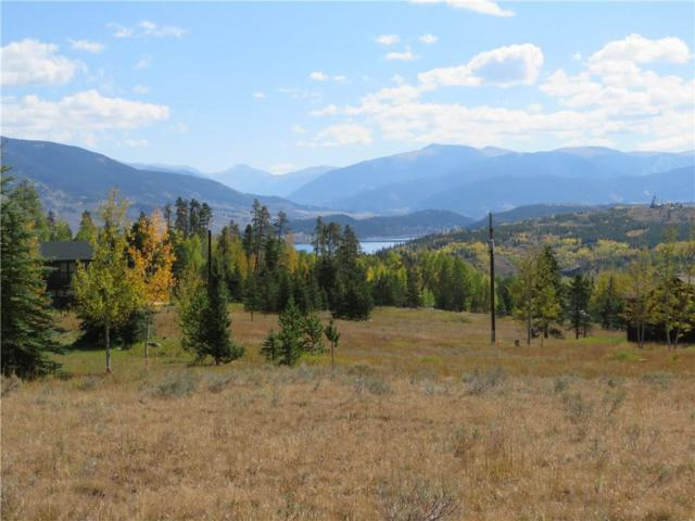 106 Royal Red Bird Drive, Silverthorne, CO 80498 (MLS #S1005099) :: Resort Real Estate Experts