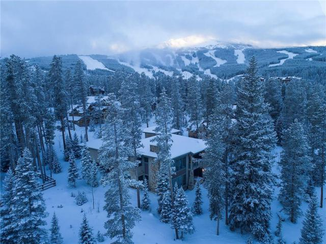 26 North Woods Lane, Breckenridge, CO 80424 (MLS #S1007339) :: Resort Real Estate Experts