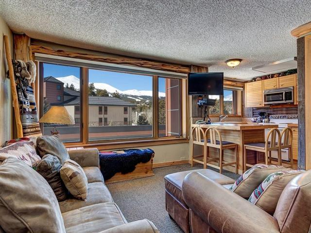 535 S Park Avenue #214, Breckenridge, CO 80424 (MLS #S1008226) :: Resort Real Estate Experts