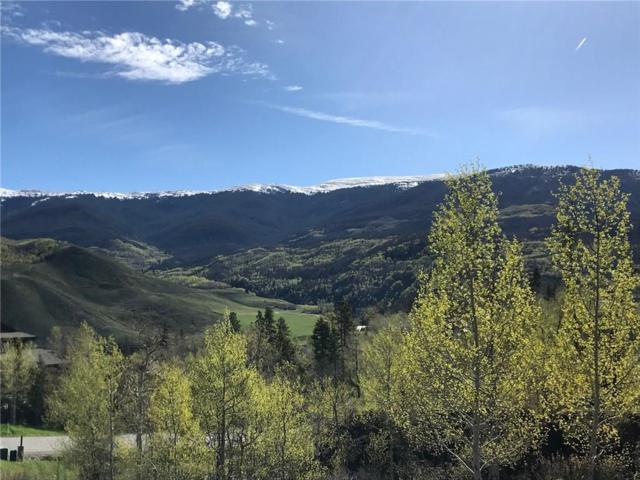 320 Game Trail Road, Silverthorne, CO 80498 (MLS #S1008296) :: Colorado Real Estate Summit County, LLC