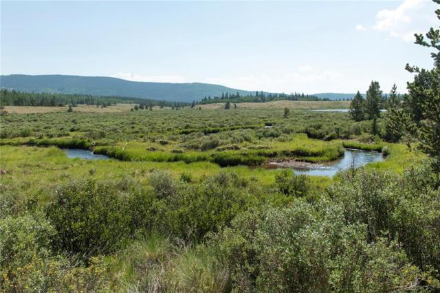 384 High River Court, Alma, CO 80420 (MLS #S1009947) :: Colorado Real Estate Summit County, LLC