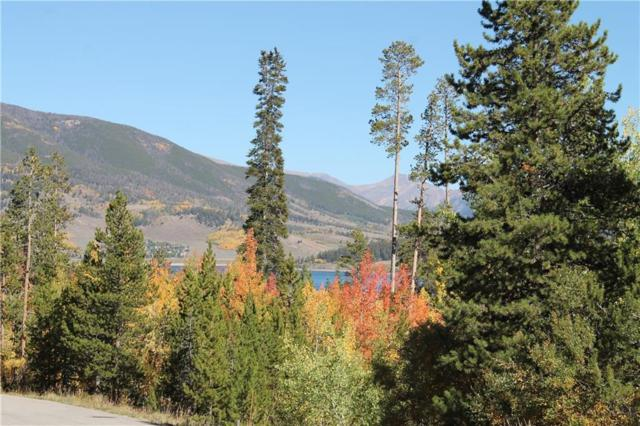 142 Kings Court, Silverthorne, CO 80498 (MLS #S1010805) :: Colorado Real Estate Summit County, LLC