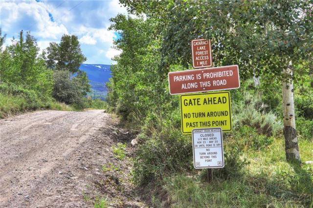 445 Cataract Creek Road, Silverthorne, CO 80498 (MLS #S1014174) :: Dwell Summit Real Estate