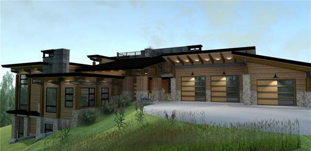 81 Mayfly Drive, Silverthorne, CO 80498 (MLS #S1019045) :: Colorado Real Estate Summit County, LLC