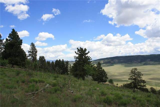 0 Middle Fork Vista, Fairplay, CO 80440 (MLS #S1026013) :: Colorado Real Estate Summit County, LLC