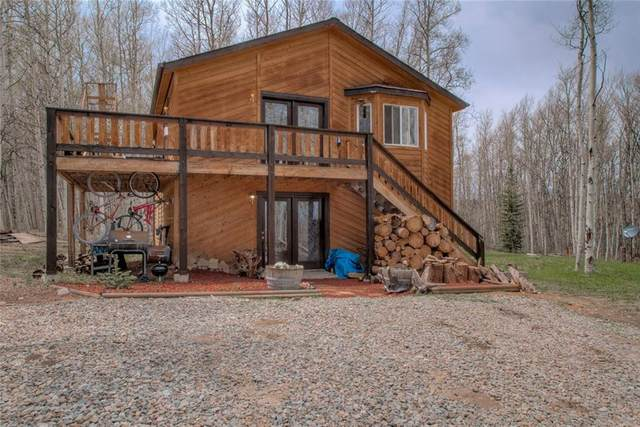 53 Rhodes Court, Fairplay, CO 80440 (MLS #S1026283) :: Colorado Real Estate Summit County, LLC
