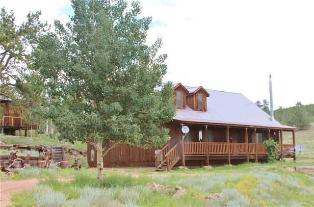 98 Pinto Trail, Como, CO 80432 (MLS #S1029338) :: eXp Realty LLC - Resort eXperts