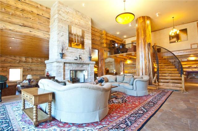 445 Davenport Loop, Breckenridge, CO 80424 (MLS #S1008147) :: Resort Real Estate Experts