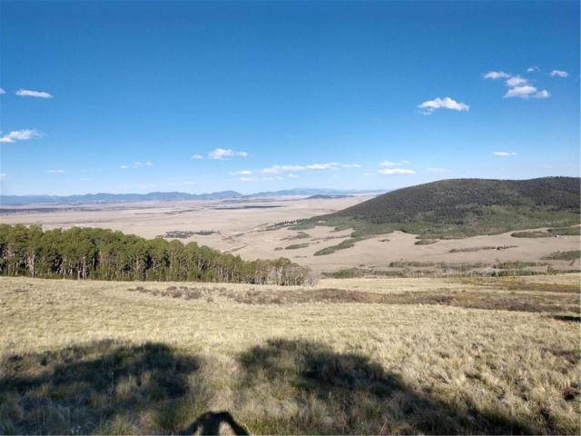 0 Black Mountain Rch Road, Fairplay, CO 80440 (MLS #S1008533) :: Colorado Real Estate Summit County, LLC