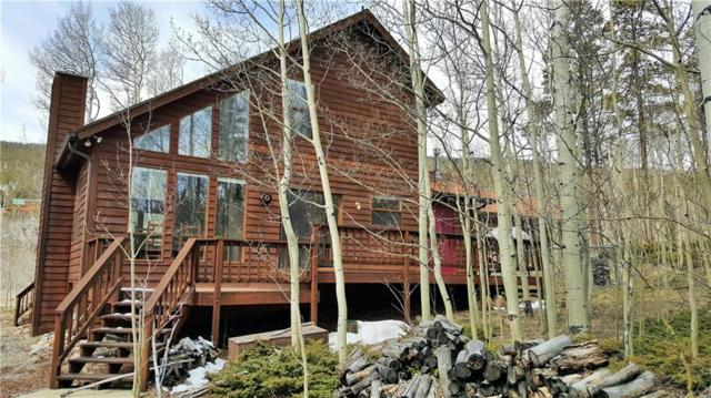 505 Warm Springs Road, Fairplay, CO 80440 (MLS #S1012564) :: Resort Real Estate Experts