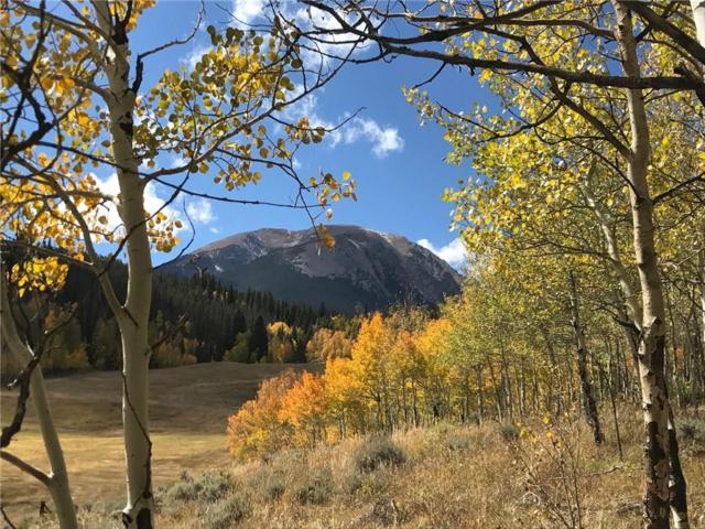 1430 Ruby Road, Silverthorne, CO 80498 (MLS #S392343) :: Colorado Real Estate Summit County, LLC
