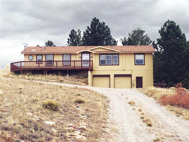3352 High Creek Road, Fairplay, CO 80440 (MLS #S1010974) :: Colorado Real Estate Summit County, LLC