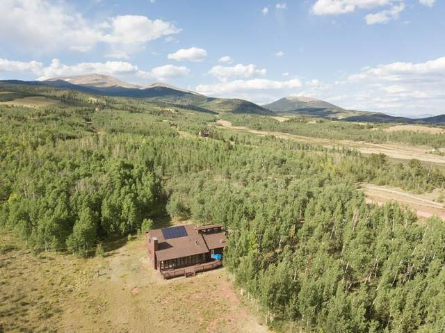 91 Sawmill Lane, Fairplay, CO 80440 (MLS #S1015290) :: eXp Realty LLC - Resort eXperts
