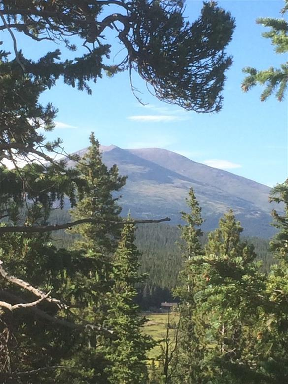 0 County Road 14A, Fairplay, CO 80440 (MLS #S1002205) :: Resort Real Estate Experts