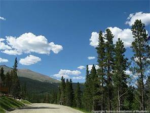 118 Aspen Street, Alma, CO 80420 (MLS #S1003144) :: Colorado Real Estate Summit County, LLC