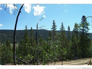 148 Aspen Street, Alma, CO 80420 (MLS #S1003145) :: Colorado Real Estate Summit County, LLC