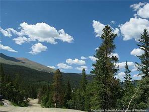 158 Aspen Street, Alma, CO 80420 (MLS #S1003146) :: Colorado Real Estate Summit County, LLC