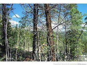 165 Spruce Street, Alma, CO 80420 (MLS #S1003147) :: Colorado Real Estate Summit County, LLC