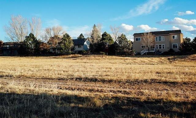 14155 Gleneagle Drive, Other, CO 80921 (MLS #S1007379) :: One Premier Properties Limited