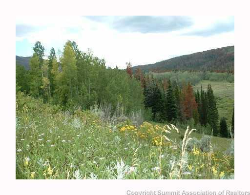 573 Old Pass Road, Kremmling, CO 80459 (MLS #S1007461) :: Resort Real Estate Experts