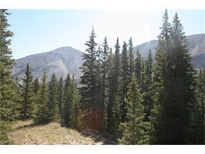 TBD Old Leavick Road, Fairplay, CO 80440 (MLS #S1007871) :: Resort Real Estate Experts