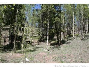 95 N Aspen Street, Alma, CO 80420 (MLS #S1007969) :: Colorado Real Estate Summit County, LLC